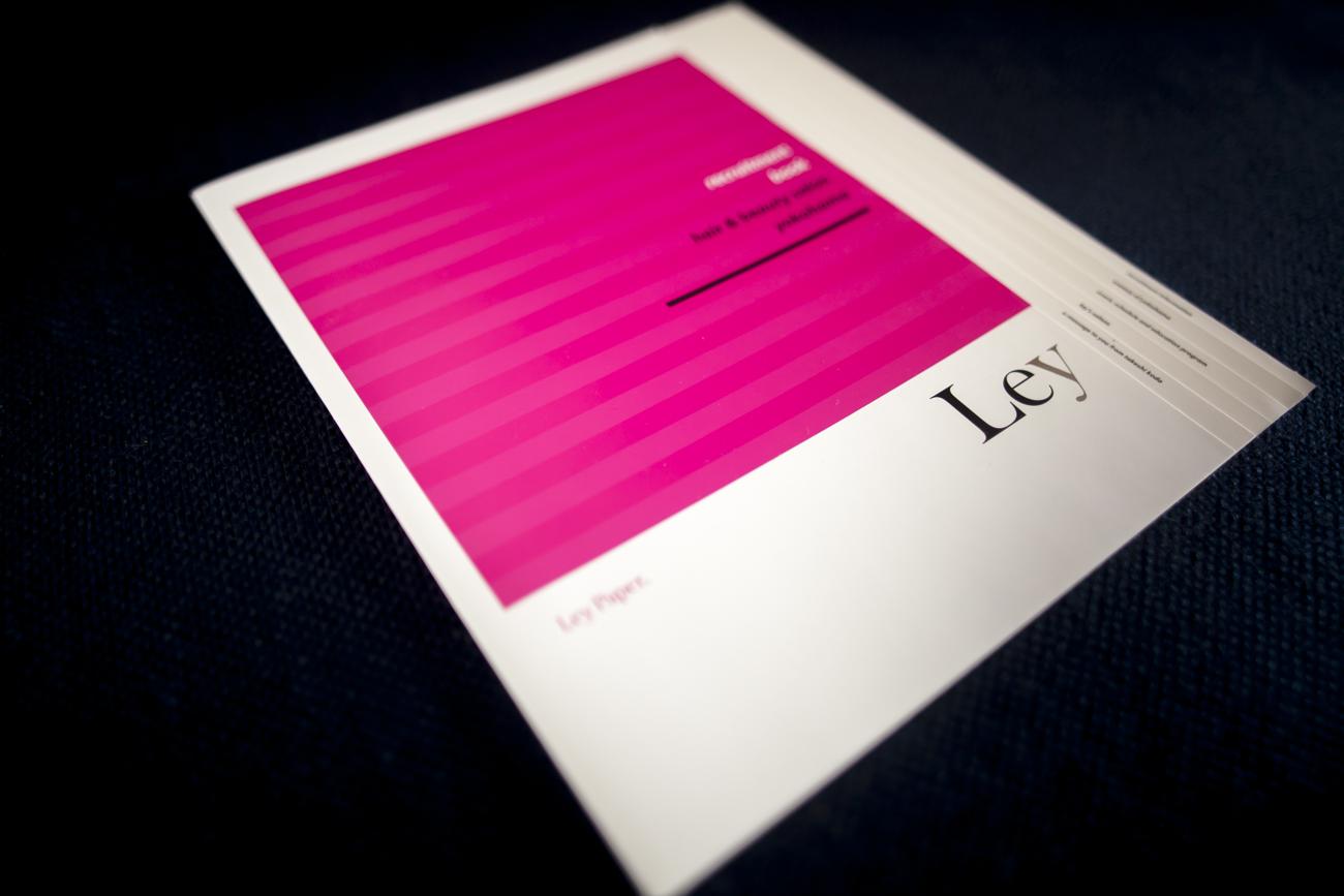 採用用パンフレット Ley グラフィックデザイン
