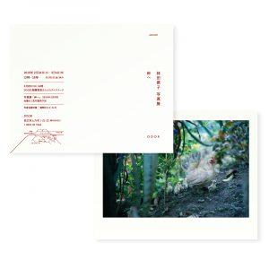林田摂子 写真集 「岸へ」 | 装幀・ブックデザイン